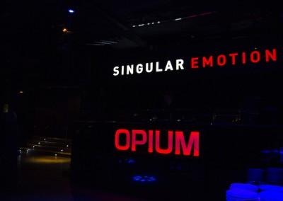 Singular_Emotion_DSC0003