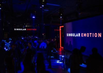 Singular_Emotion_DSC0281